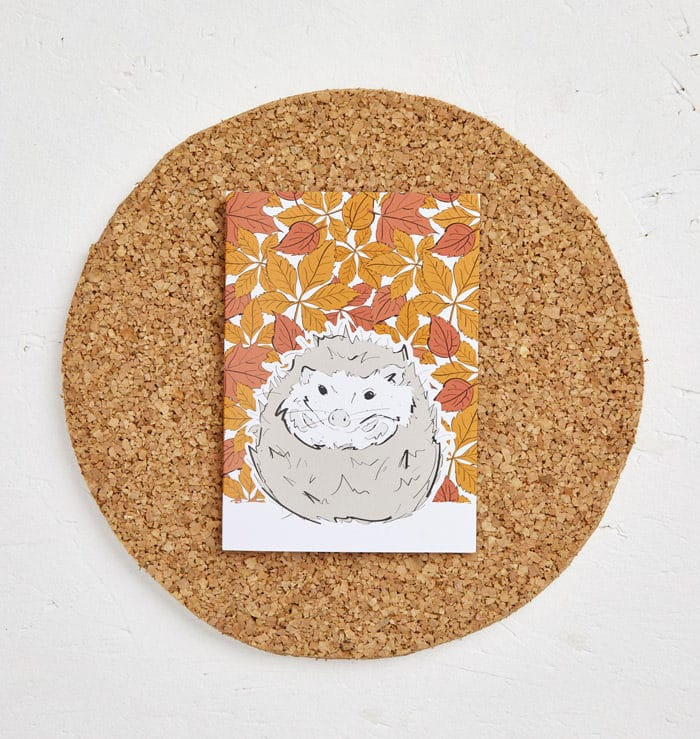 Mr Hedgehog Greeting Card