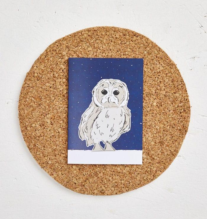 Mr Owl Greeting Card