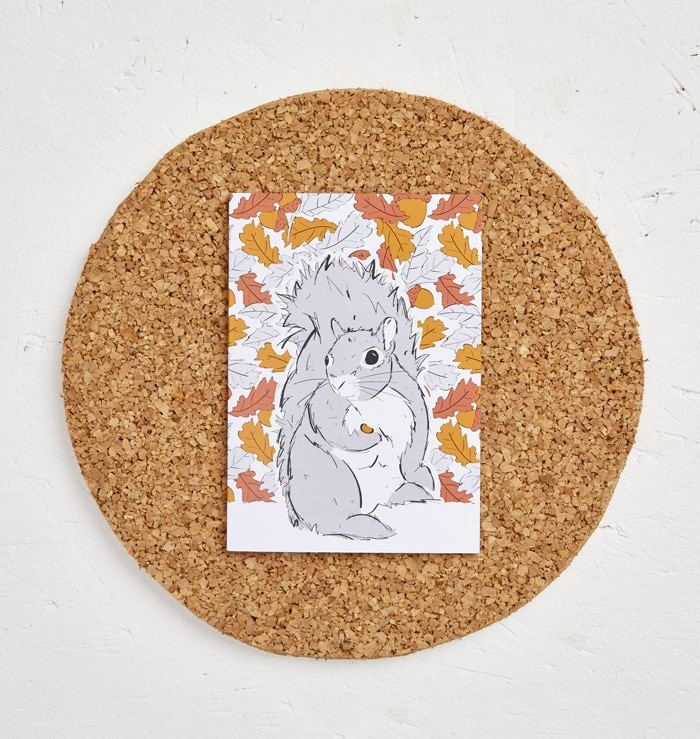Mr Squirrel Greeting Card