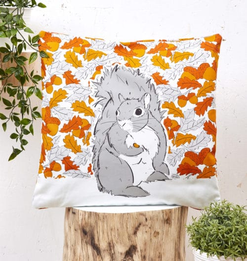 Mr Squirrel Cushion Cover