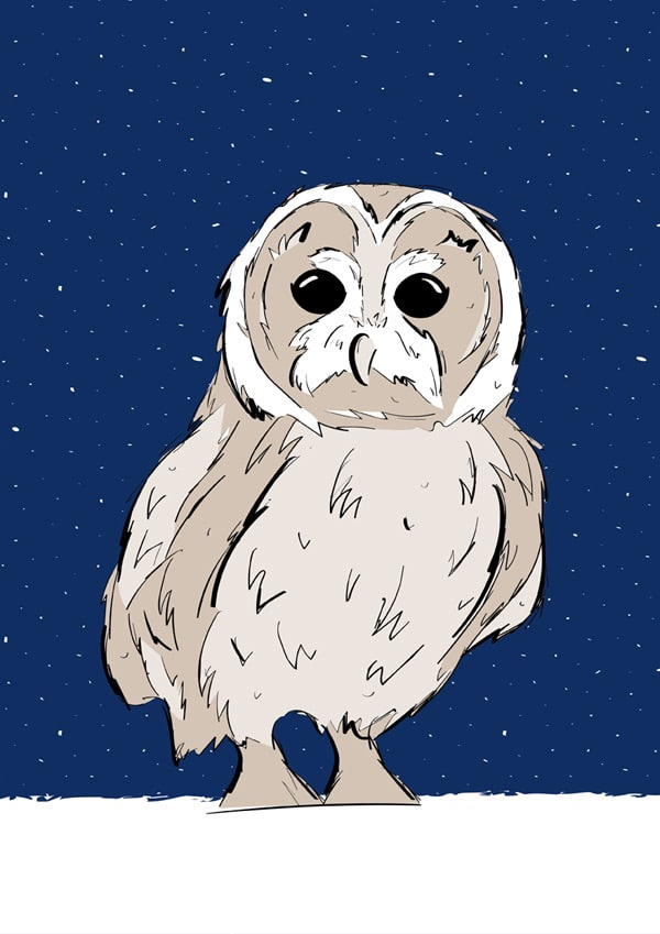 Roo-tid Animal Illustrations - Mr Owl
