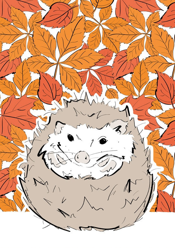 Roo-tid Animal Illustrations - Mr Hedgehog