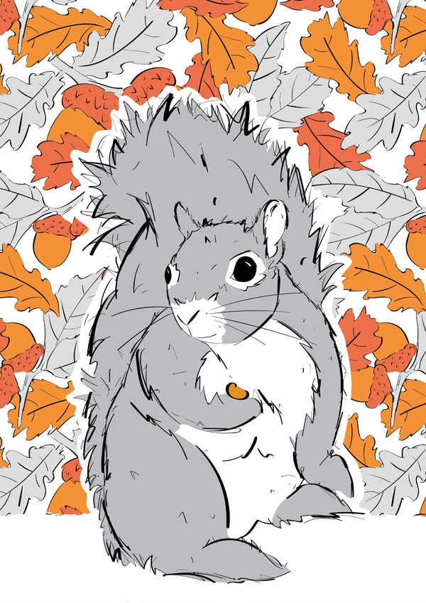 Roo-tid Animal Illustrations - Mr Squirrel